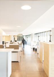 Oficinas Transoceanica
